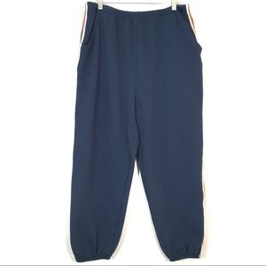 Wild Fable Stripped Straight Leg Blue Jogger Pants